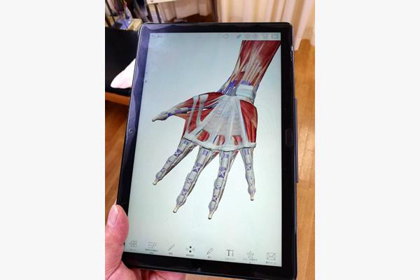 筋肉や神経、筋膜の説明に使用するタブレット画面